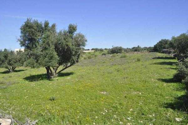 Terrain en vente sur la route d'agadir